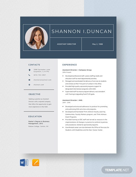 Assistant Director Resume Template