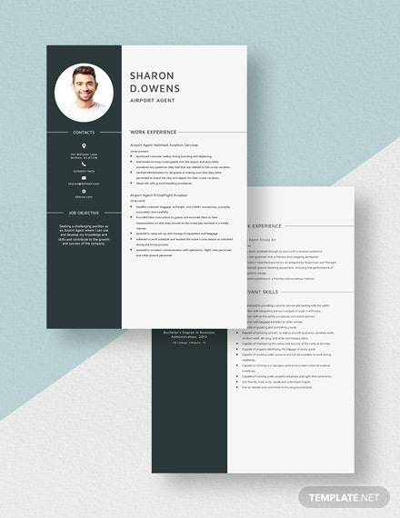 Airport Agent Resume Download