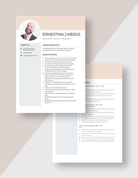 Assistant Credit Manager Resume Download