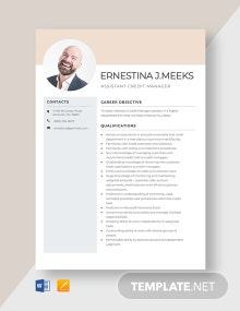 Assistant Credit Manager Resume Template
