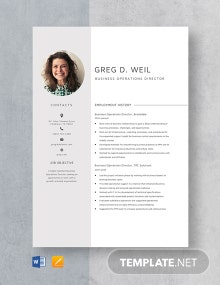 Business Operations Director Resume Template