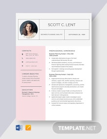 Business Planning Analyst Resume Template