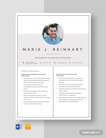 Business Planning Manager Resume Template