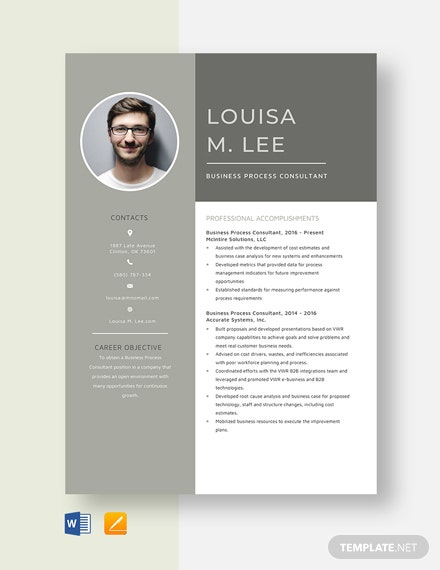 Business Process Consultant Resume Template