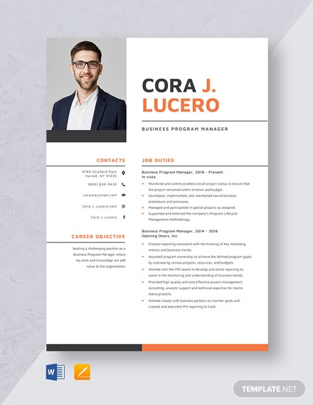 Business Program Manager Resume Template