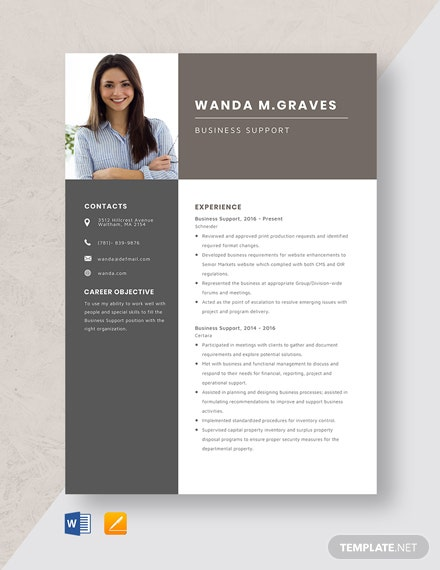 Business Support Resume Template