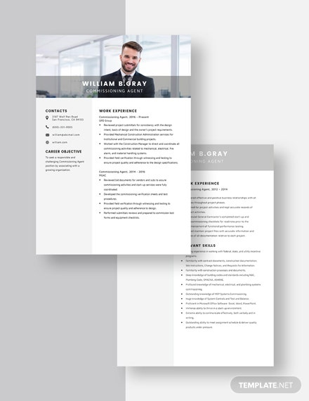 Commissioning Agent Resume Download