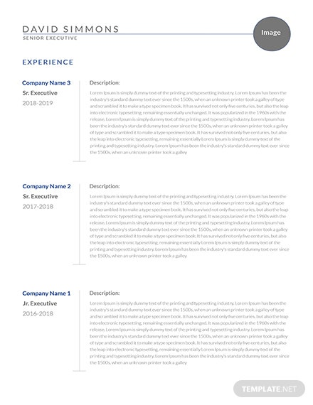Senior Executive Resume Template [Free PSD] - InDesign, Word, Apple Pages, PDF, Publisher