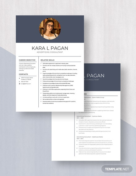 Advertising Consultant Resume Download