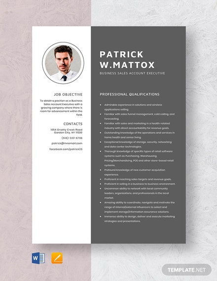 Business Sales Account Executive Resume Template