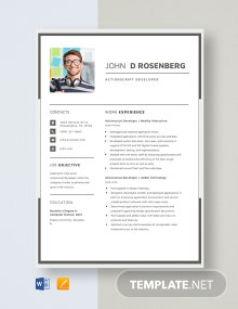 Actionscript Developer Resume Template