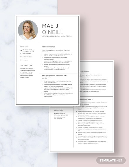 Active Directory System Administrator Resume Download