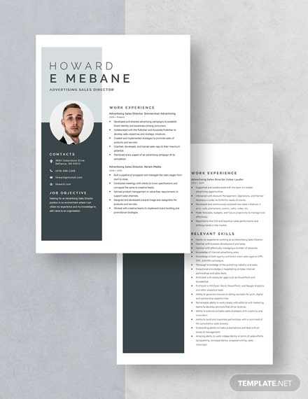 Advertising Sales Director Resume Download