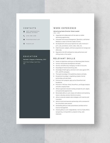 Advertising Sales Director Resume Template