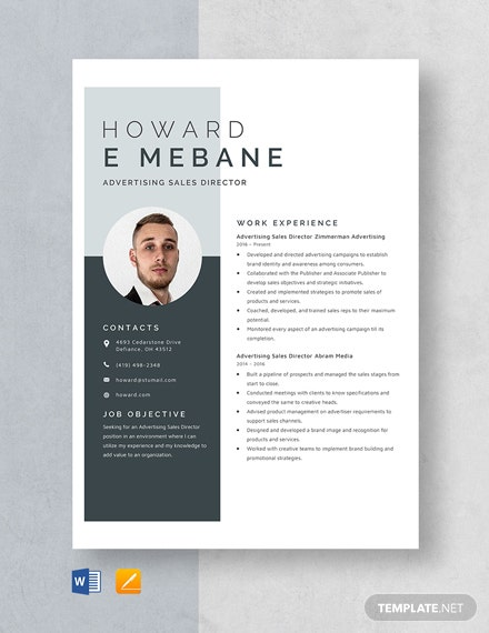 Advertising Sales Director Resume Template