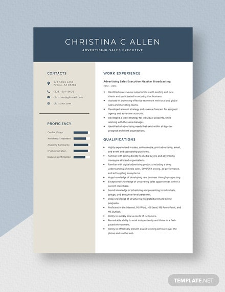 Advertising Sales Executive Resume Template