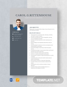 Agency Account Executive Resume Template