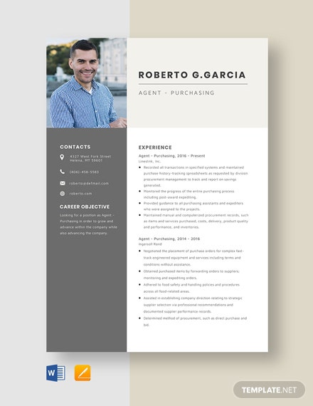 Agency Sales Manager Resume Template