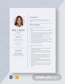 Assistant Team Leader Resume Template