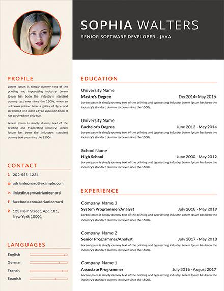 Free Senior Java Developer Resume Template