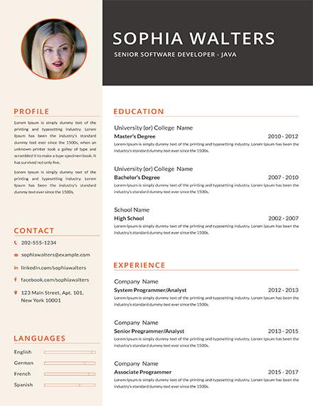 Senior Java Developer Resume