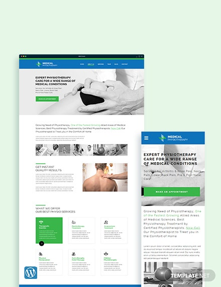 Physiotherapy WordPress Theme/Template