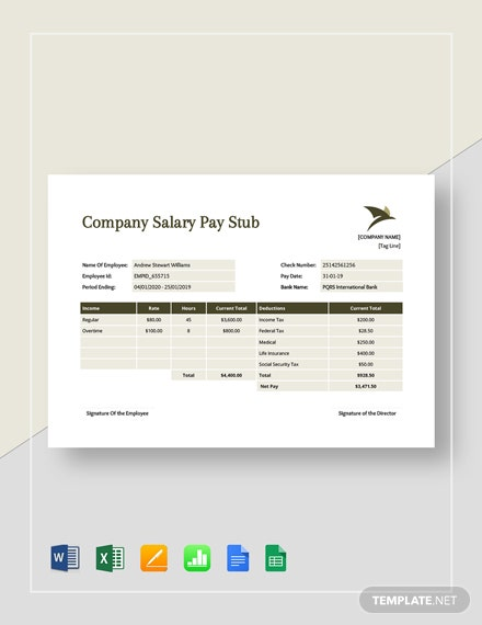 Company Salary Pay Stub Template