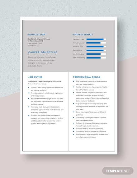 Automotive Finance Manager Resume Template Download 1996 Resumes