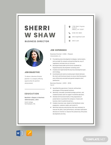 Business Director Resume Template