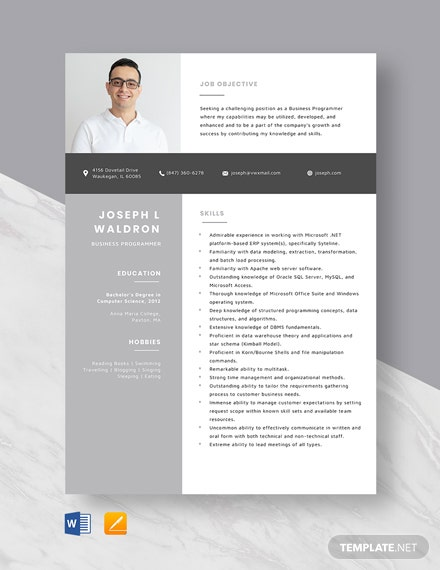Business Programmer Resume Template
