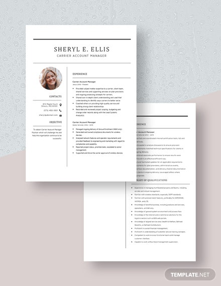 Carrier Account Manager Resume Download