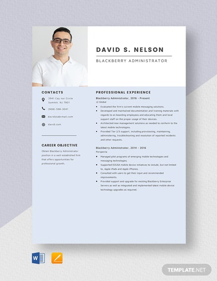 Blackberry Administrator Resume Template
