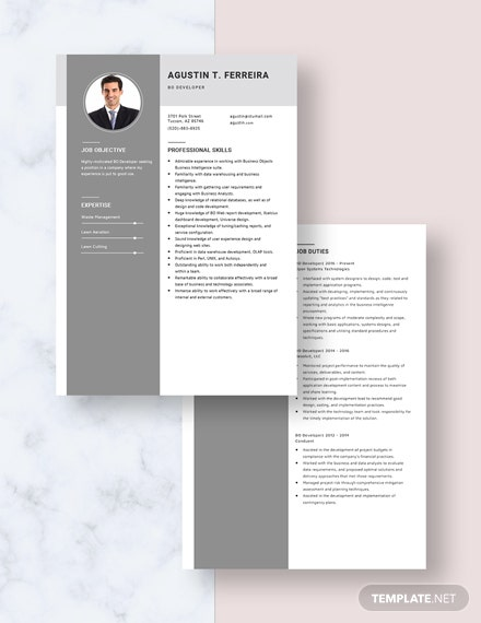 BO Developer Resume Download