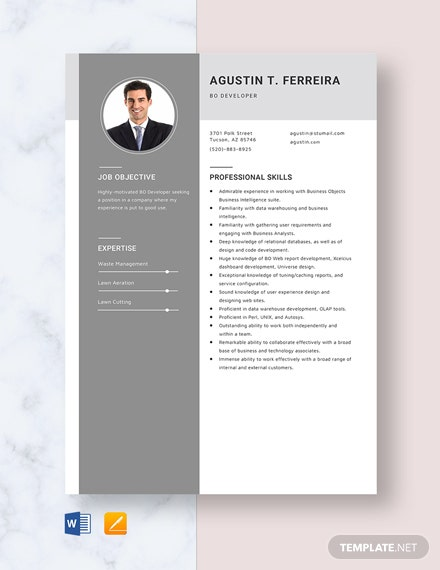BO Developer Resume
