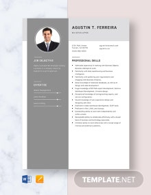BO Developer Resume Template