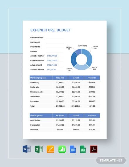 Expenditure Budget Template