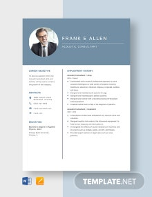 Acoustic Consultant Resume Template