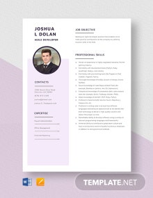Agile Developer Resume Template
