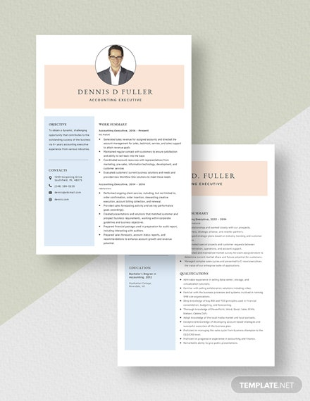 Accounting Executive Resume Download