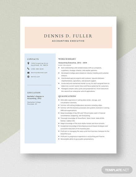 Accounting Executive Resume Template