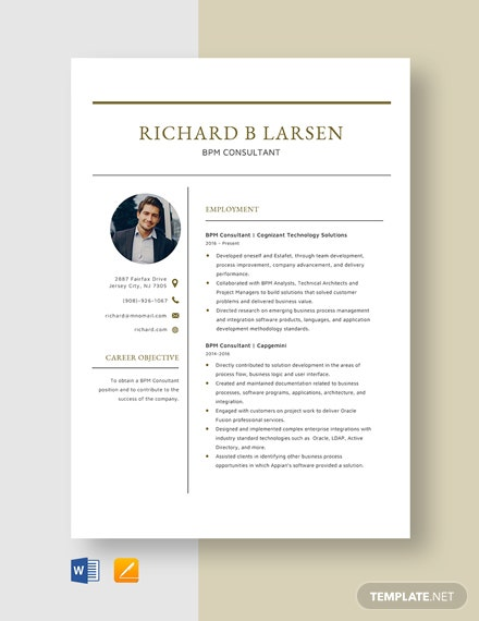 BPM Consultant Resume Template