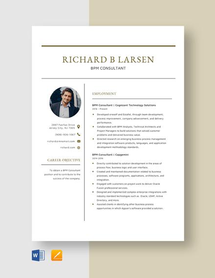 BPM Consultant Resume Template