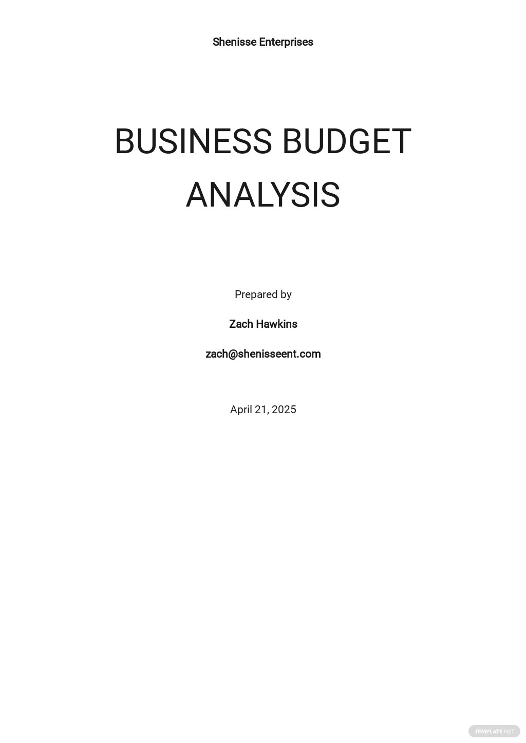 Business Budget Analysis Template