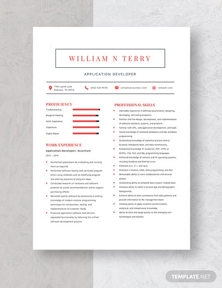 Application Developer Resume Template
