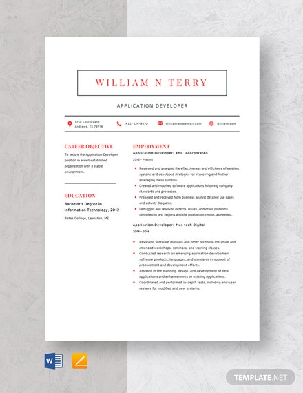 Application Developer Resume Template