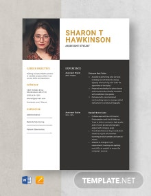 Assistant Stylist Resume Template