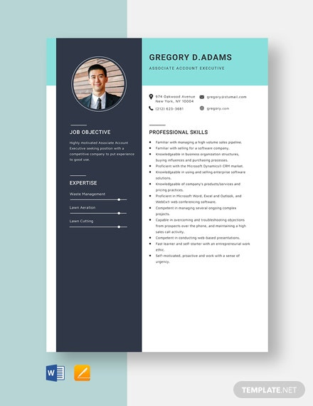 Associate Account Executive Resume Template