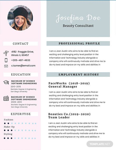 free hardware and networking fresher resume template