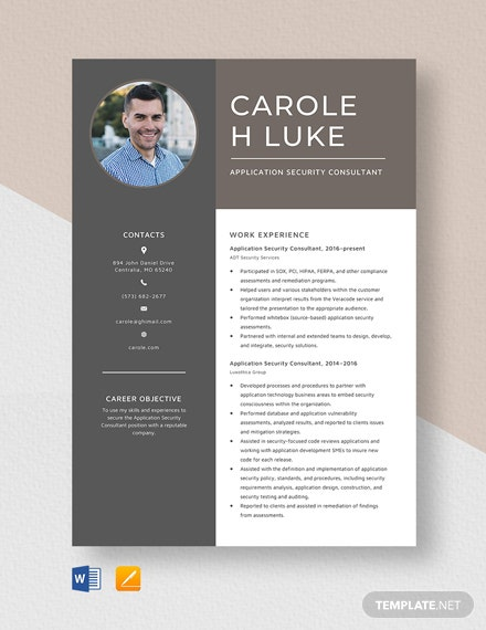 Application Security Consultant Resume Template
