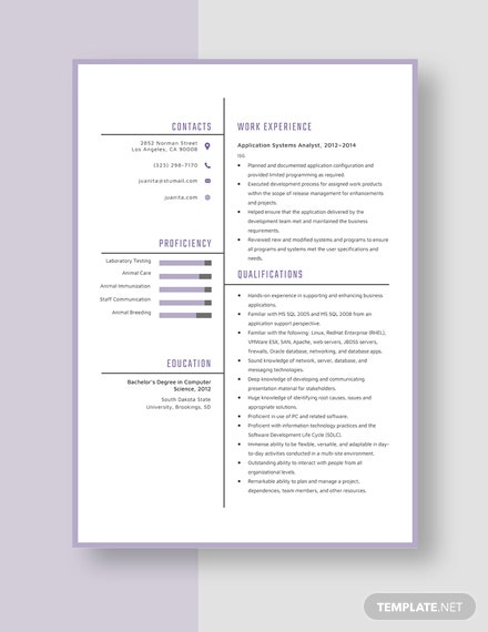 Application Systems Analyst Resume Template